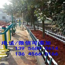 周口淮阳县仿真草坪绿色假人造草皮足球场市场走向图片