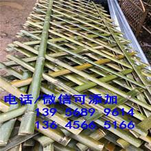 黃山區pvc綠化柵欄pvc綠化欄桿可以買現貨圖片