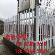 晋江市竹护栏竹篱笆围墙新农乡村民宿也可以按要求订做图片