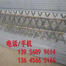 洛阳市竹篱笆护栏竹子护栏各种规格