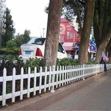 吉林省PVC护栏道路围墙花园隔离栏园林每周回顾图片
