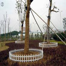 吉林省pvc草坪护栏电力围墙变压器隔离栏市场走向图片