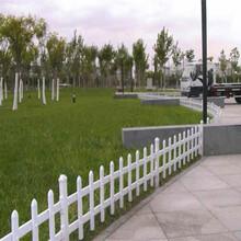 苏州姑苏工程竹栅栏围栏花园围栏庭院栅栏多少钱图片