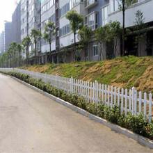 江苏无锡小区围挡绿化草坪栅栏多少钱一米图片