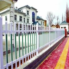 河南濮阳工程竹栅栏围栏花园围栏庭院栅栏多少钱图片
