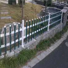 揭阳市庭院栅栏绿化栏杆塑钢pvc护栏围栏厂家批发图片