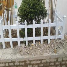 赣州于都县pvc塑钢护栏pvc塑钢围栏市场走向图片