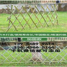 大同礦區伸縮竹籬笆拉網花園竹柵欄圍欄哪家買圖片