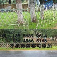 清远清新县pvc栅栏pvc栏杆厂商出售图片