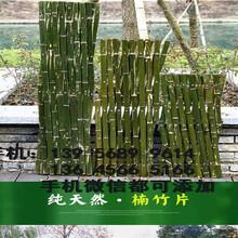 张家口康保县装饰塑料花植物墙面客厅阳台假草皮绿植背景图片