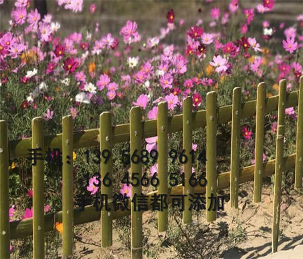 晋城沁水pvc塑钢护栏 pvc塑钢围栏     那个省钱