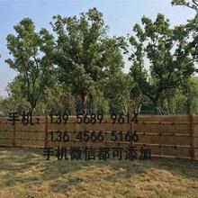 市政綠化護欄戶外安裝圖片圖片