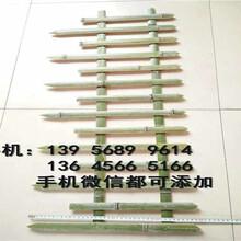清新县竹篱笆绿化围墙塑钢围栏怎么样图片