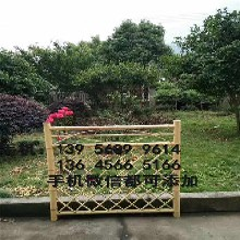 莲湖区竹篱笆栅栏竹子围栏厂家图片