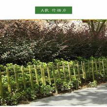 东乡县栏杆pvc塑钢护栏批发图片