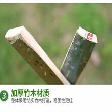 浙江台州防腐竹篱笆户外篱笆栅栏围栏护栏哪里附近有的卖?图片