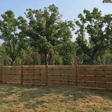 清涧县竹篱笆绿化围墙塑钢围栏厂家批发图片