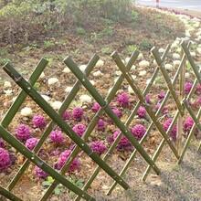 驻马店汝南pvc草坪护栏pvc草坪围栏找哪家图片