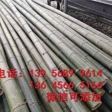 邯郸丛台竹篱笆花园草坪栏杆护栏竹片栅栏怎么样图片