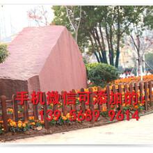河南濮阳绿色地毯垫子装饰那个省钱图片