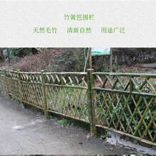 吉林省木栅栏伸缩栅栏竹篱笆每日报价图片