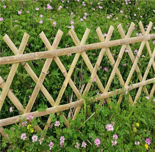 南丰县竹篱笆竹子护栏花园围栏草坪护栏 中闻资讯图片