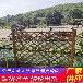 遼源西安竹籬笆pvc護欄竹子護欄-30/40/50公分高(中聞資訊)