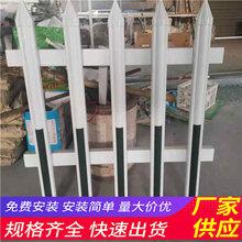 湖北孝感园艺竹栅栏pvc围墙栅栏电话咨询(中闻资讯)图片
