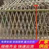 荆州松滋木栅栏绿化带花园栏杆竹篱笆(中闻资讯)