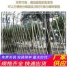 三门峡卢氏县木栅栏pvc仿木围栏竹篱笆(中闻资讯)