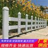 清丰竹篱笆pvc护栏pvc花坛栏杆(中闻资讯)