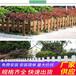 咸宁咸安竹篱笆pvc护栏绿化栏杆源头厂家(中闻资讯)