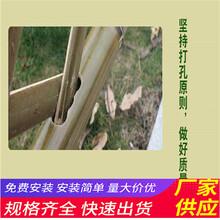 宝丰县竹篱笆竹子护栏室外篱笆防腐碳化木草坪护栏(中闻资讯)图片