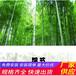 赤壁市竹篱笆竹子护栏防腐木栅栏围栏草坪护栏(中闻资讯)