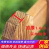 苏州相城木栅栏花池栅栏竹篱笆(中闻资讯)