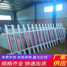 江苏盐城花园花坛pvc道路护栏厂家报价(中闻资讯)图片