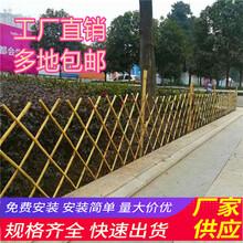 义马市竹篱笆竹子护栏pvc草坪栅栏草坪护栏(中闻资讯)图片