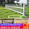 绿化带花园栏杆