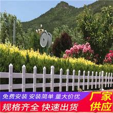 南京鼓楼木栅栏pvc围墙围栏竹篱笆(中闻资讯)图片