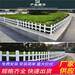 贵州铜仁篱笆栅栏工程围挡专业生产厂家(中闻资讯)