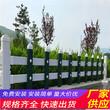 邵陽雙清pvc草坪護欄竹籬笆塑鋼護欄綠化圍欄(中聞資訊)圖片