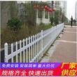 南陽淅川縣pvc草坪護欄竹籬笆塑鋼護欄白色塑料小(中聞資訊)圖片