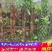 贵州毕节户外花园围栏竹篱笆专业生产厂家(中闻资讯)