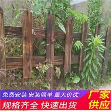 菏泽单县pvc护栏草坪栏杆竹篱笆厂家供货(中闻资讯)图片