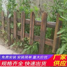 新密市竹篱笆pvc护栏户外花园围栏(中闻资讯)图片