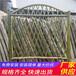 福州鼓楼竹篱笆pvc护栏防腐木木栅栏源头厂家(中闻资讯)