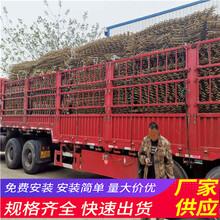 咸宁嘉鱼县木栅栏伸缩围栏竹片竹篱笆(中闻资讯)图片