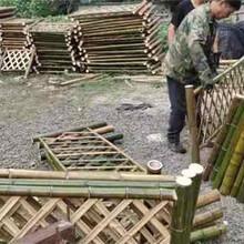 常德津木栅栏篱笆网栅栏竹篱笆(中闻资讯)图片