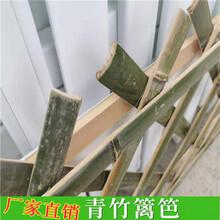 衡阳蒸湘pvc草坪护栏竹篱笆塑钢护栏pvc绿化栏杆(中闻资讯)图片