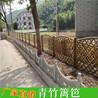 常熟竹篱笆pvc护栏塑钢围栏(中闻资讯)